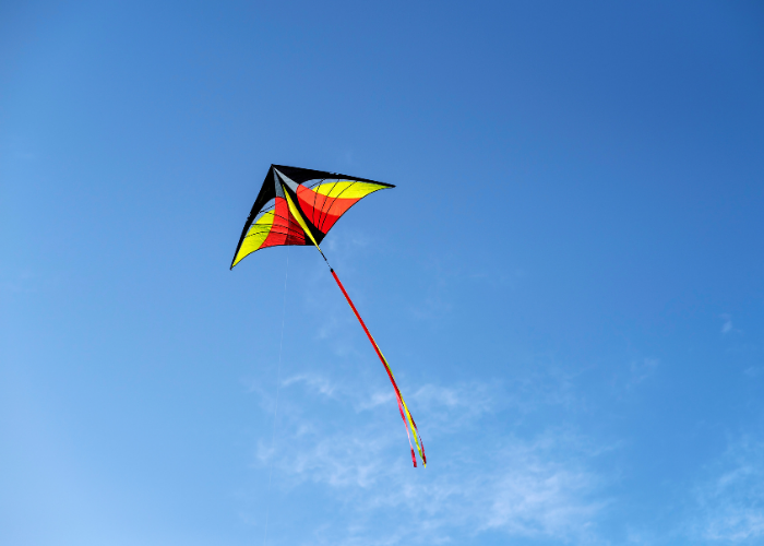 Delta Kite with a tail in action
