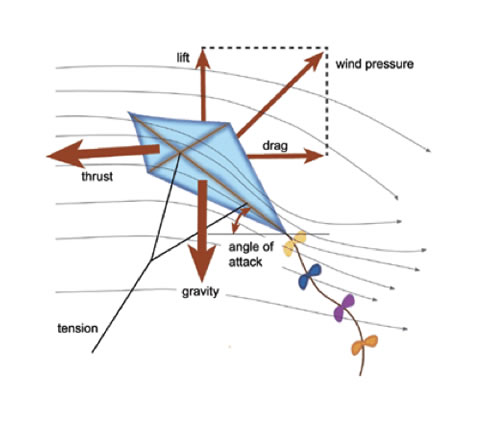 Diagram of Forces acting on a kite